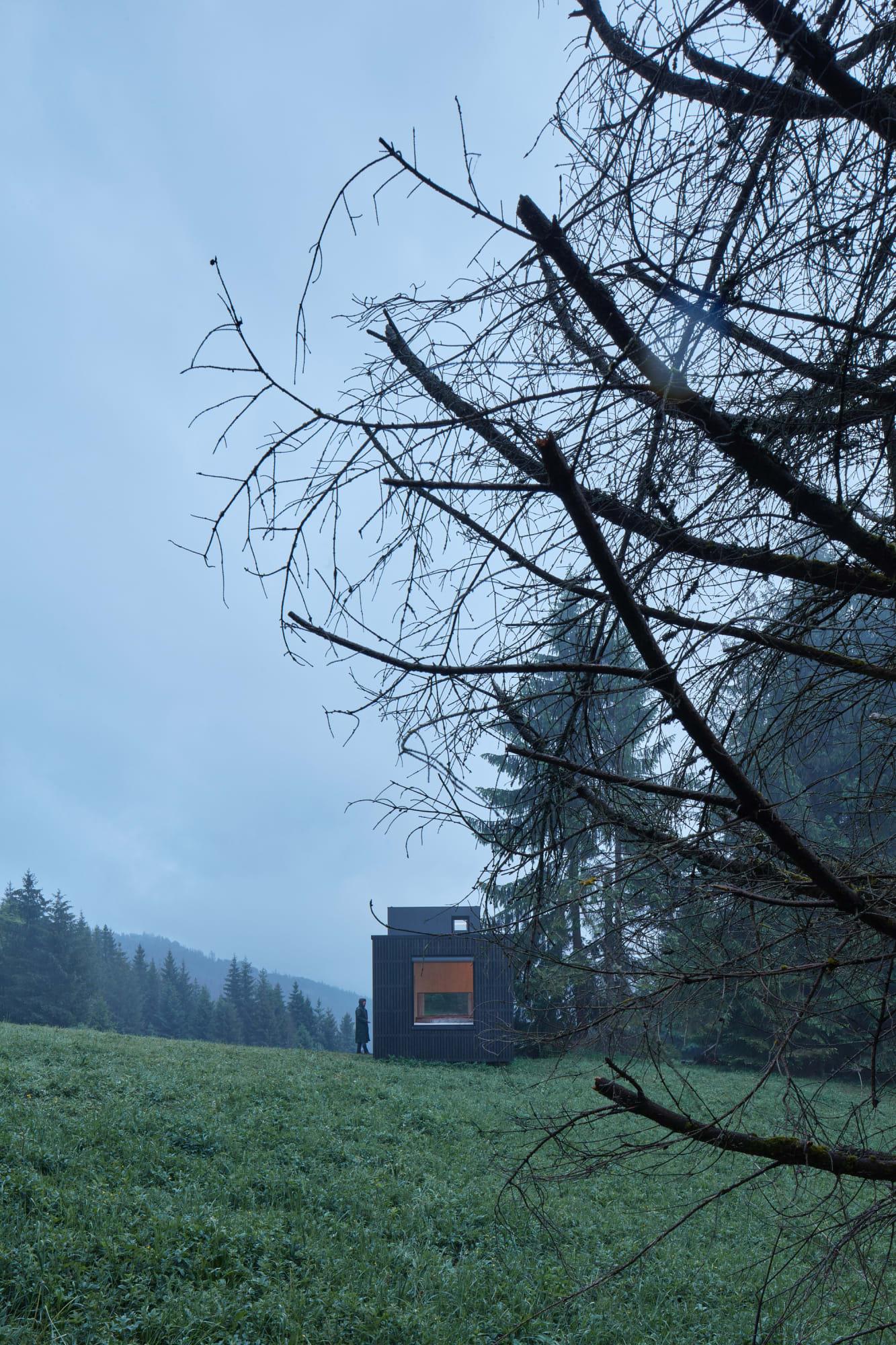 ARK SHELTER STUDIO, BoysPlayNice · Ark-Shelter · Divisare