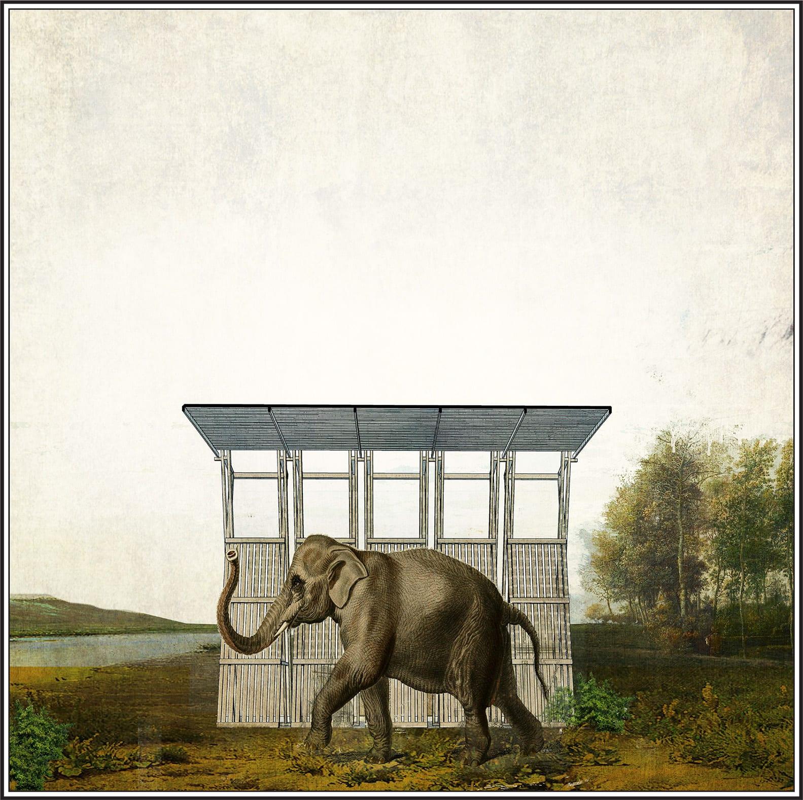Marco Giovinazzo · A viagem do Elefante — a modular cabin